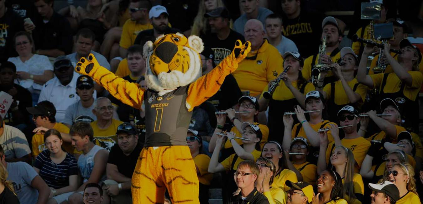 Image: Truman the Tiger at a football game.