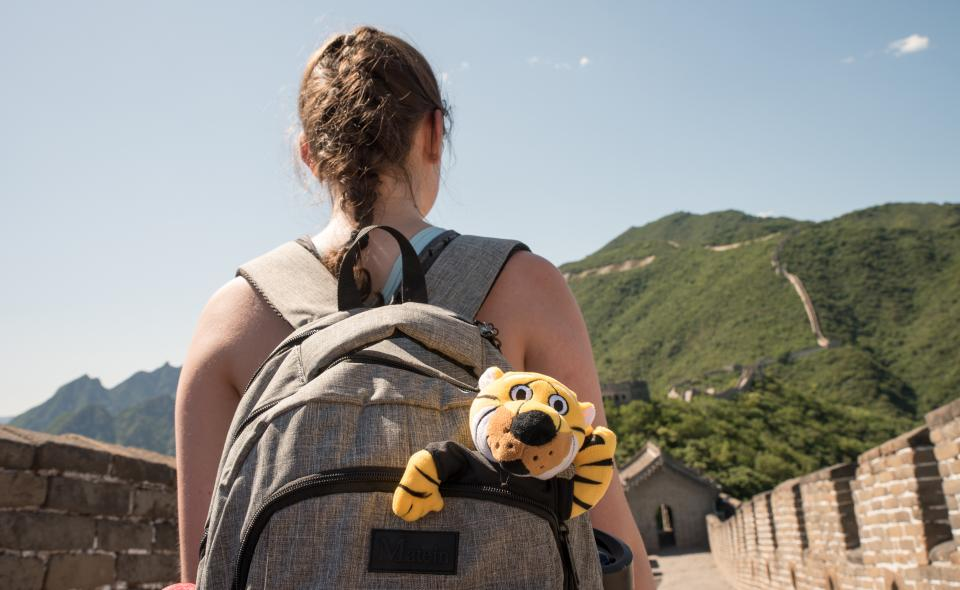 Image: Female student turned away wearing backpack on the Great Wall of China with toy Truman the Tiger sticking out.